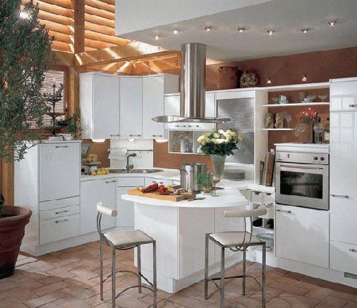 Fotos de decoracion de cocinas especiales y actuales - Cocinas actuales fotos ...