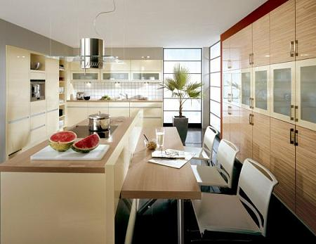 Modelos de cocinas for Lo ultimo en cocinas