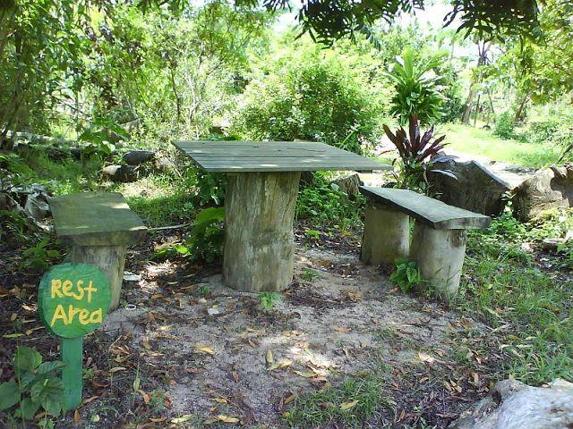 Decoraci n de jardines rusticos for Jardines rusticos fotos