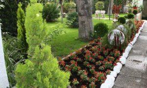 Software diseño de jardines