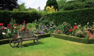 Software diseño de jardines gratis