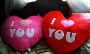 Cojines san valentin