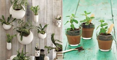 Ideas para decorar el hogar1