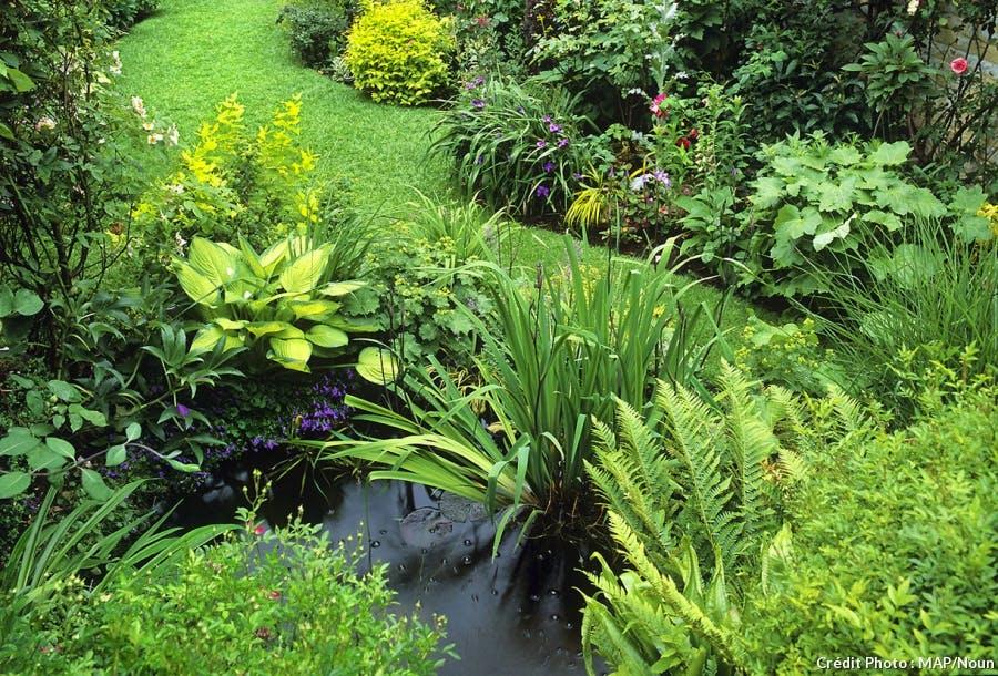 jardin-pequeño-mucho-verde
