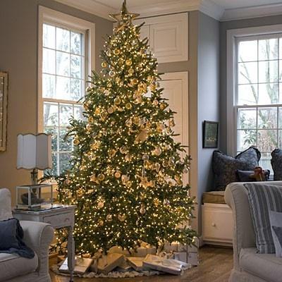 arbol-navidad-antiguo