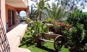 Patios y exteriores decoracion de jardin de patio