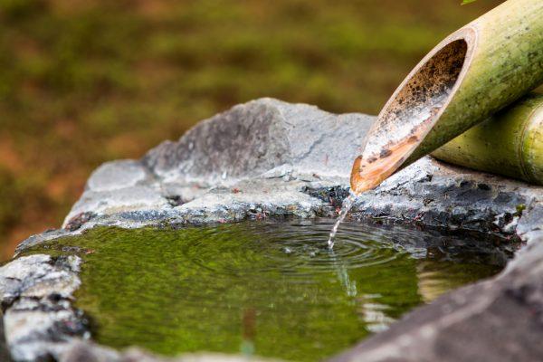 agua-jardin-japones